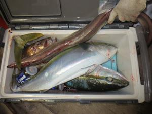 12 10 2 12月10日午後の釣果